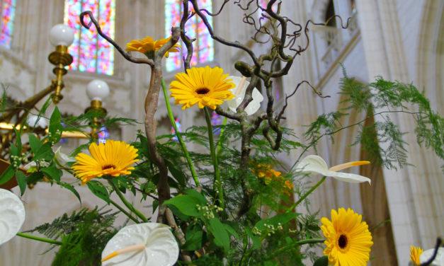 Parcours floral à la Cathédrale de Nantes