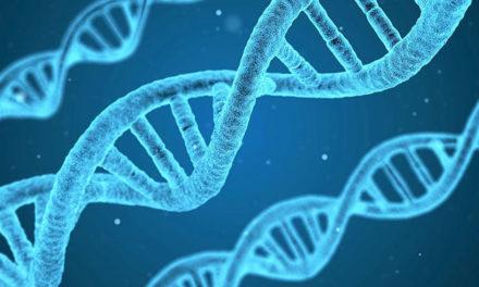 Projet de loi de bioéthique