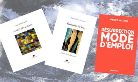 De la poésie, encore de la poésie à la médiathèque diocésaine