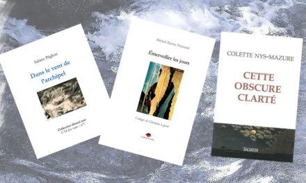 La poésie en images à la médiathèque diocésaine