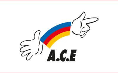 L'ACE 44 recherche un coordinateur (H/F) du réseau  départemental