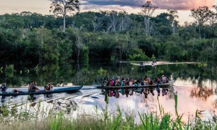 Campagne du CCFD-Terre Solidaire contre les fausses solutions climatiques