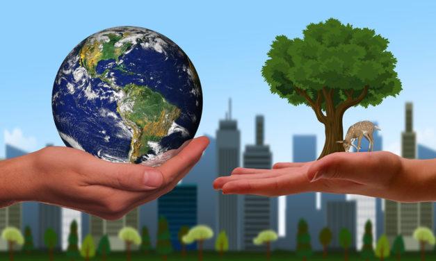 L'écologie en catéchèse